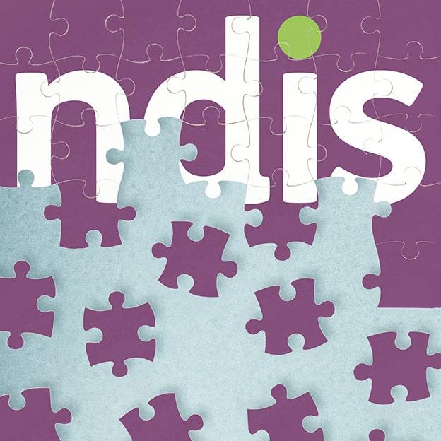 NDIS puzzle